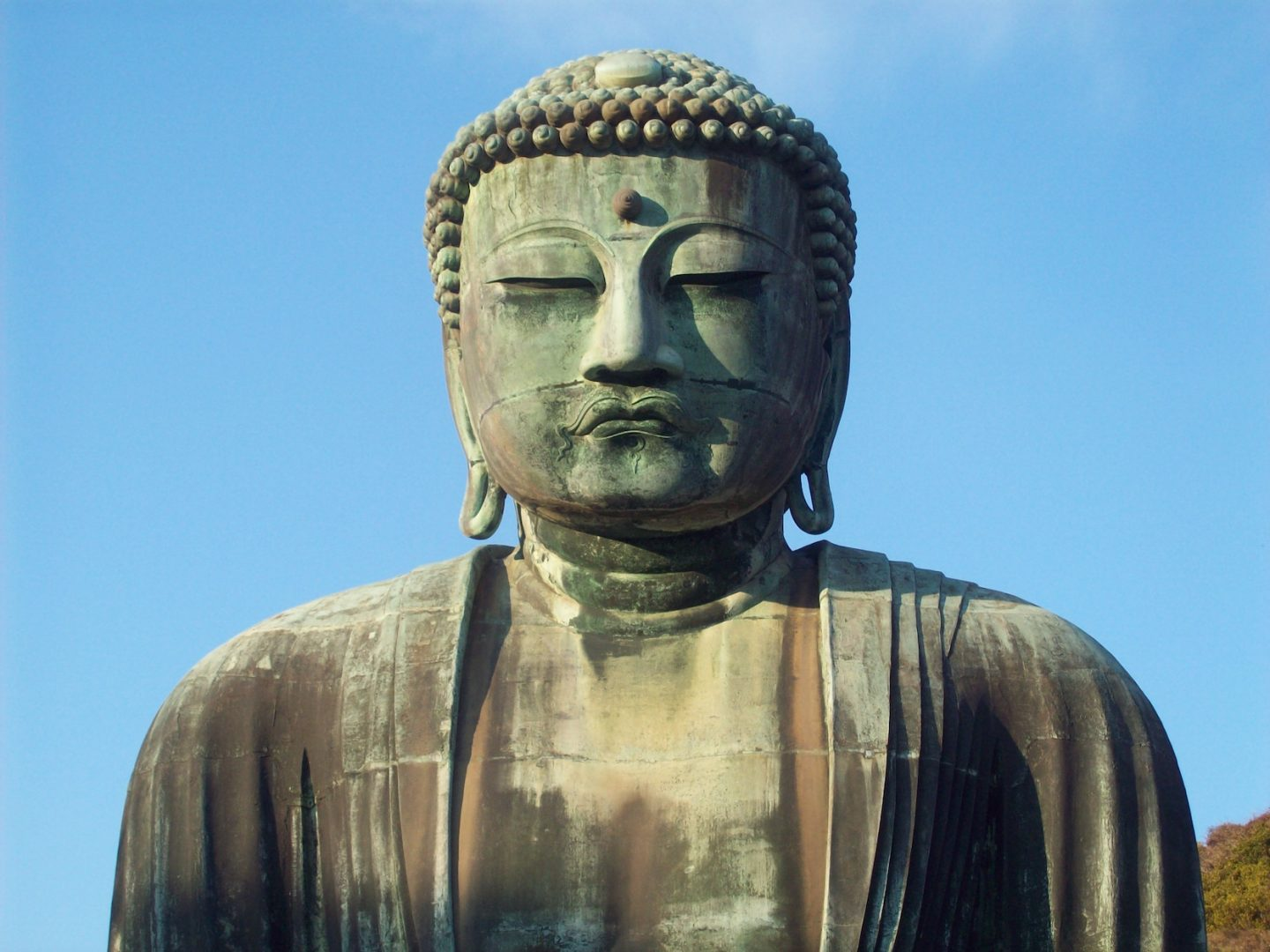 Buddha Daibutsu Kamakura Japan close up view