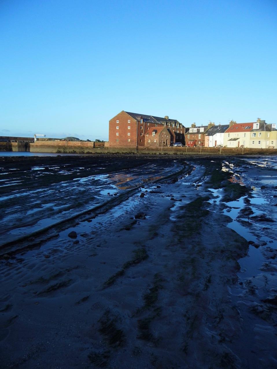 Banishing the January Blues: North Berwick