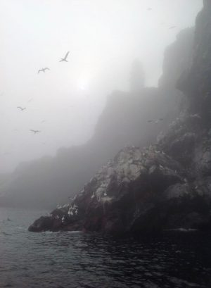 The Bass Rock near North Berwick, Scotland during a sea mist (haar). taken during a boat trip on an iPad.