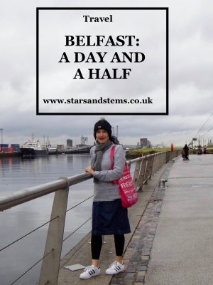 Belfast: A Day and a Half - Stars & Stems blog