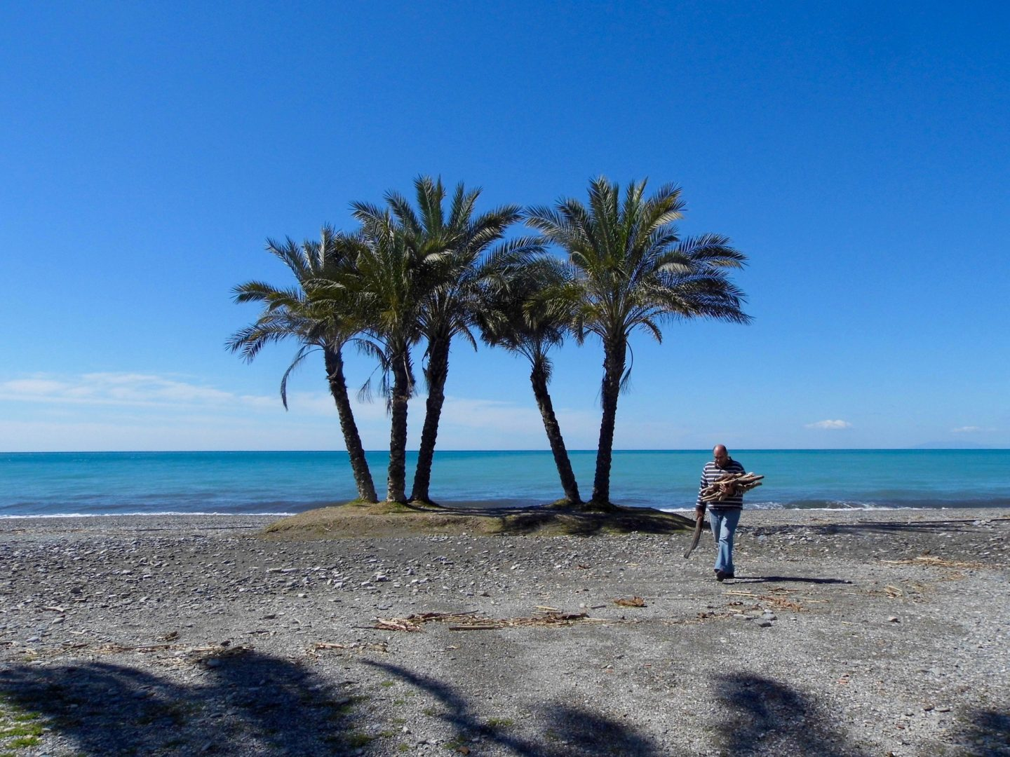 Social distancing: Photos on the theme. Man walking by palm trees on seafront in La Herradura, Spain.